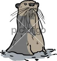 OtterFreehand Image