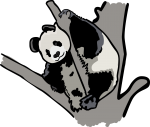 Panda freehand drawings