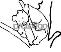 PandaFreehand Image