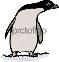 PenguinFreehand Image