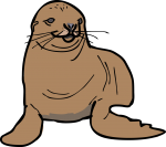 seal freehand drawings