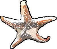 SeastarFreehand Image