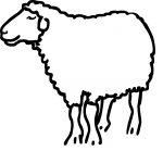 Sheep freehand drawings