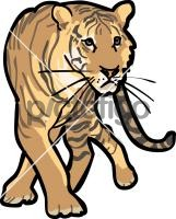 TigerFreehand Image