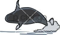 WhaleFreehand Image
