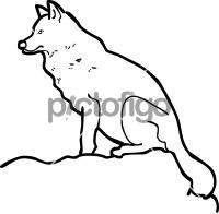 WolfFreehand Image