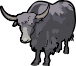 Yak freehand drawings
