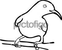 Olive backed  SunbirdFreehand Image