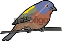 Painted Bunting Freehand Image