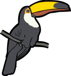 Toco Toucan freehand drawings