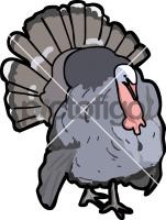 TurkeyFreehand Image