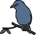 Unicolored Jay freehand drawings