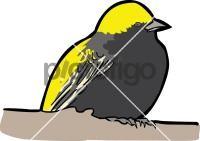 Yellow BishopFreehand Image