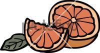 GrapefruitFreehand Image