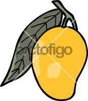 MangoFreehand Image