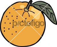 orangeFreehand Image
