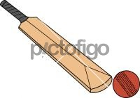 CricketFreehand Image